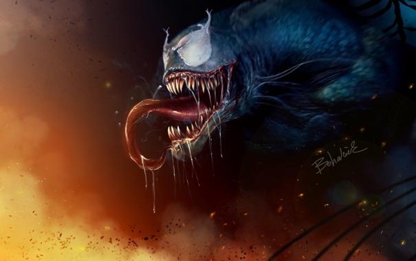 Фото обои огонь, spider-man, паутина, арт, art, venom, веном