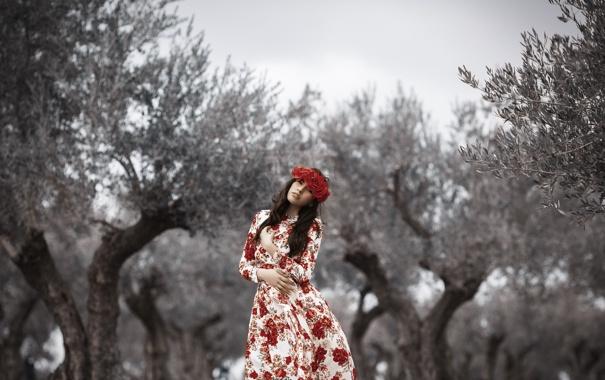 Фото обои девушка, цветы, стиль, фон, платье