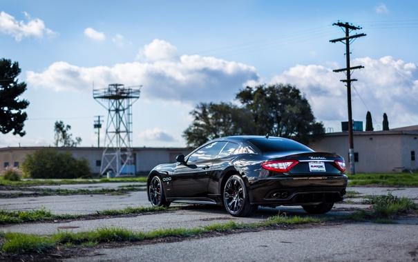 Фото обои деревья, чёрный, Maserati, столб, black, вид сзади, мазерати