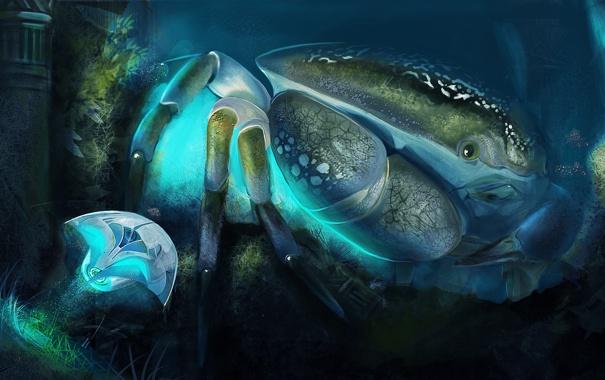Фото обои загадочный, подводный, краб, мир, Under the sea, гигантский