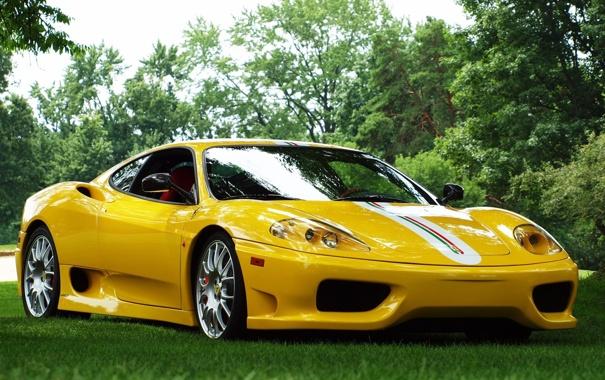 Фото обои трава, деревья, желтый, фон, Феррари, Ferrari, суперкар