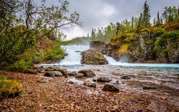 Фото обои деревья, камни, водопад, США, речка, Lake Clark National Park