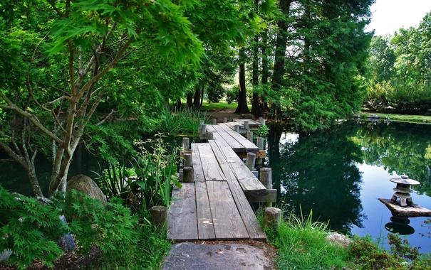 Фото обои парк, красивые зелёные деревья старый деревянный мостик