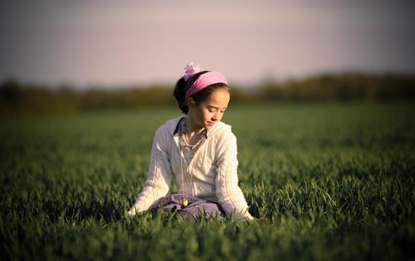 Фото обои небо, трава, взгляд, солнце, свет, радость, тепло