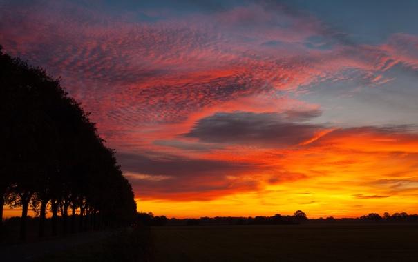 Фото обои небо, ночь, природа