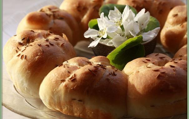 Фото обои цветок, солнце, еда, весна, утро, яблоня, булочки