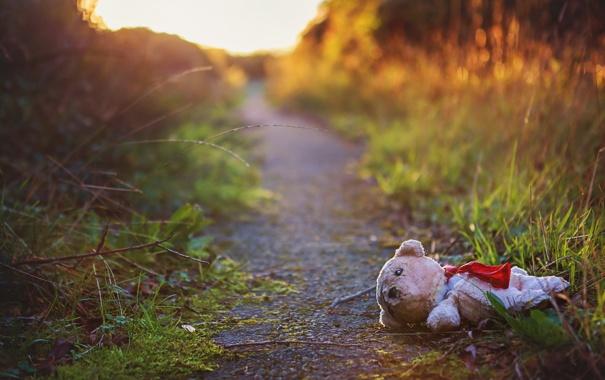Фото обои дорога, настроение, игрушка, мишка