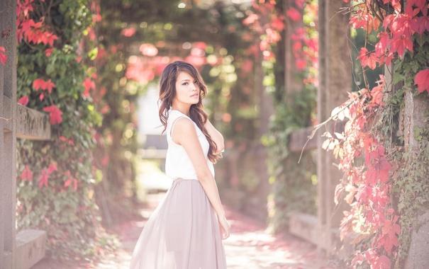 Фото обои лето, девушка, цветы, сад