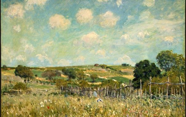 Фото обои лето, трава, природа, деревня