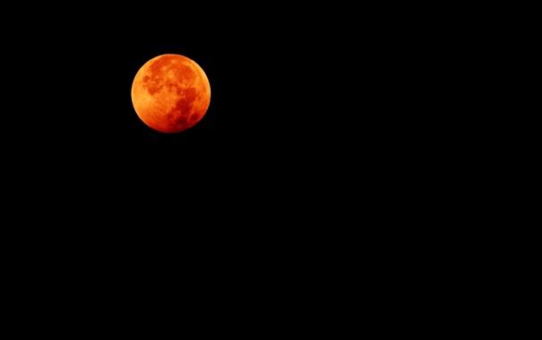 Фото обои небо, ночь, Луна, полнолуние