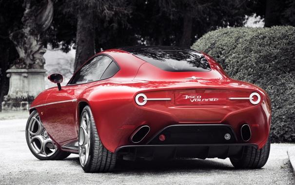 Фото обои машина, Alfa Romeo, задок, Touring, выхлопы, Disco Volante