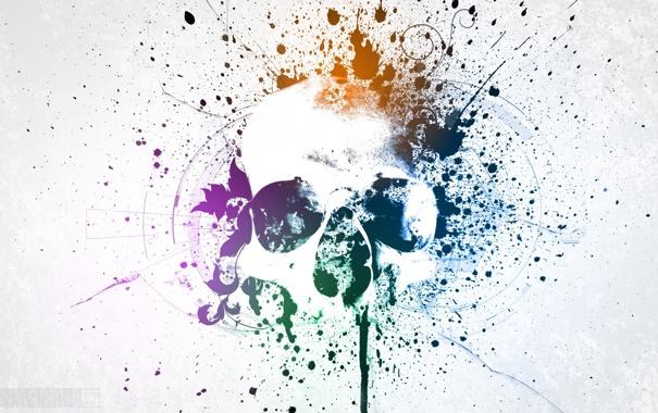 Фото обои цвета, череп, минимализм, пятна