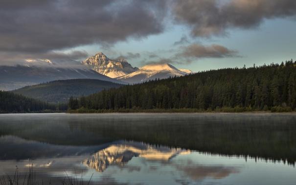 Фото обои лес, деревья, горы, природа, озеро, отражение, река