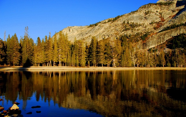 Фото обои пейзаж, небо, вода, озеро, ели, деревья, природа