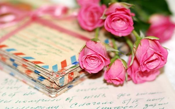 Фото обои flowers, post, Nostalgia