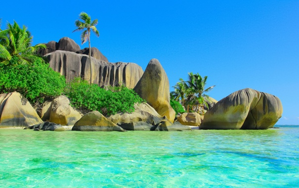 Фото обои тропики, ocean, sea, пляж, palm, солнце, океан