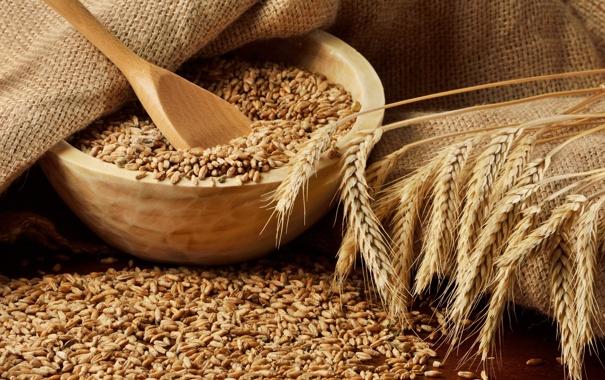 Фото обои пшеница, зерно, колоски, колосья, плошки