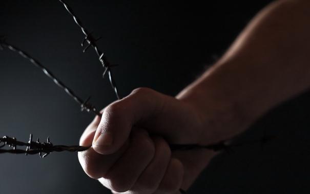 Фото обои свобода, рука, колючая проволока