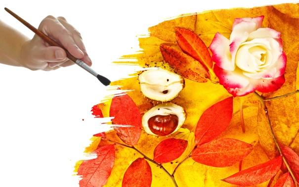 Фото обои осень, цветок, листья, рука, кисть, жёлуди