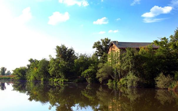Фото обои вода, дом, река, The River