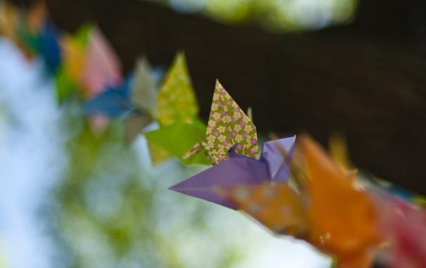 Фото обои макро, бумага, узор, цвет, птички, оригами