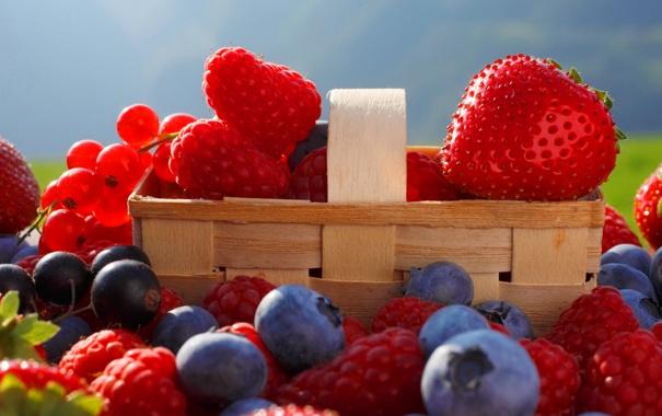 Фото обои ягоды, малина, сад, клубника, корзинка, смородина