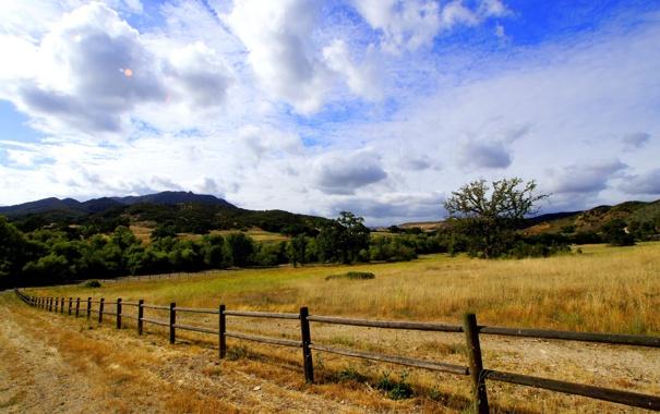 Фото обои поле, лето, пейзаж, забор