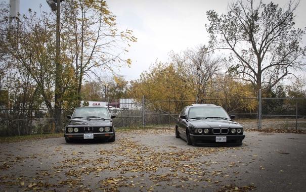 Фото обои осень, листья, тюнинг, бмв, BMW, диски, классика