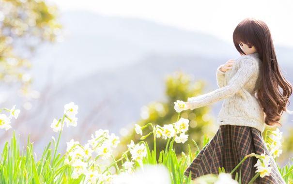 Фото обои цветы, весна, flowers, нарциссы, spring, куколка, doll