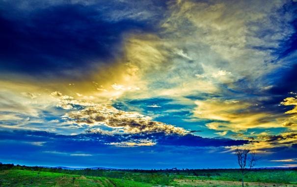 Фото обои поле, небо, трава, облака, зарево