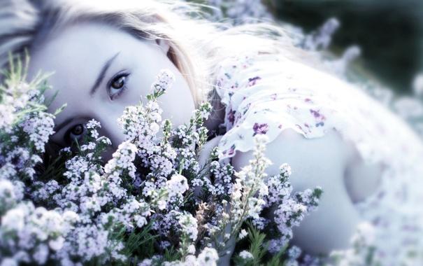 Фото обои девушка, цветы, настроение, красота