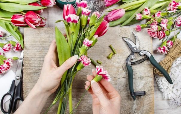Фото обои тюльпаны, flowers, tulips, spring, workplace, гвоздики, florist