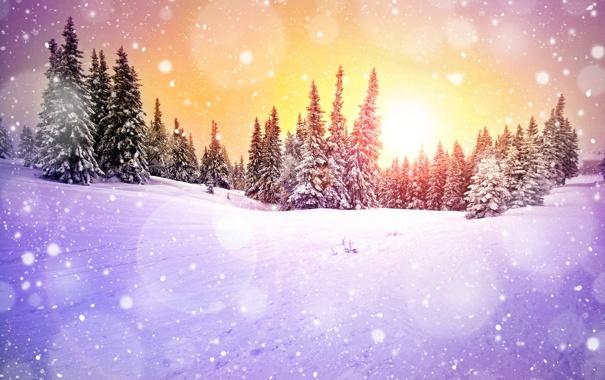 Фото обои зима, лес, солнце, снег, деревья, снежинки, рассвет