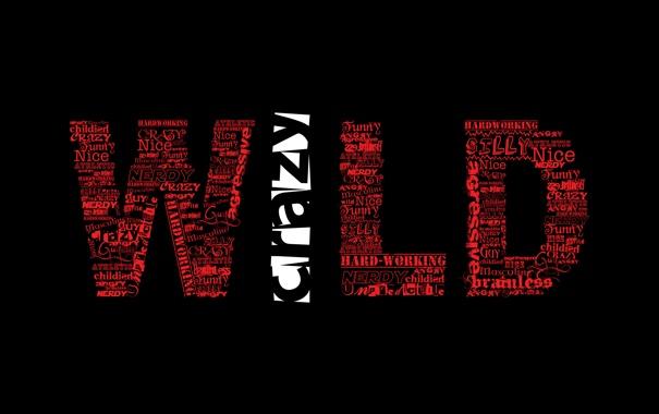 Фото обои стиль, фон, слова, crazy, wild
