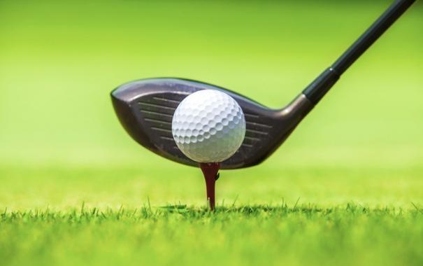 Фото обои green, Golf, ball