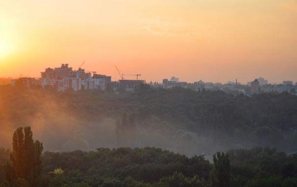 Фото обои небо, лучи, деревья, оранжевый, город, туман, парк