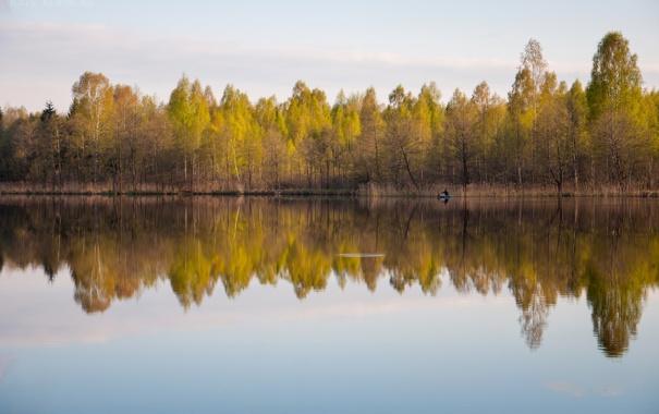 Фото обои небо, вода, деревья, природа, гладь, отражение, листва