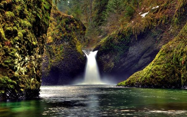 Фото обои лес, природа, река, ручей, камни, скалы, мох