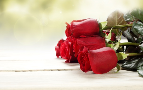 Фото обои листья, цветы, розы, букет, бутоны