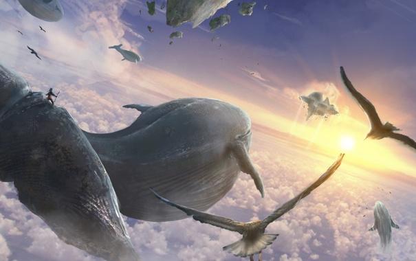 Фото обои небо, облака, киты, летят, flying whales