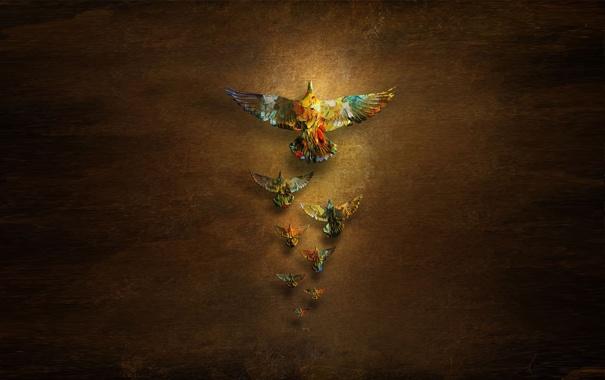 Фото обои птицы, минимализм, голуби