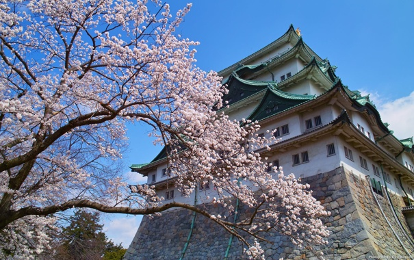 Фото обои дом, дерево, Япония, Nagoya City
