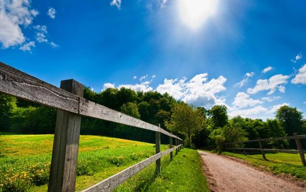 Фото обои дорога, лето, ограда