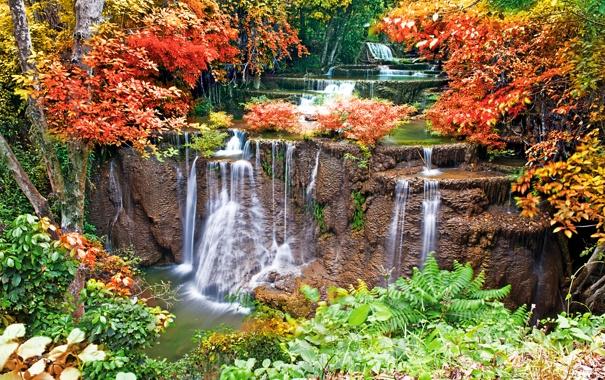 Фото обои осень, деревья, листва, водопад