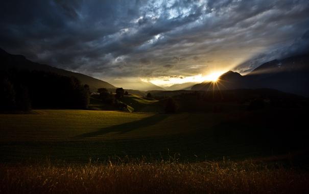 Фото обои поле, небо, солнце, деревья, холмы