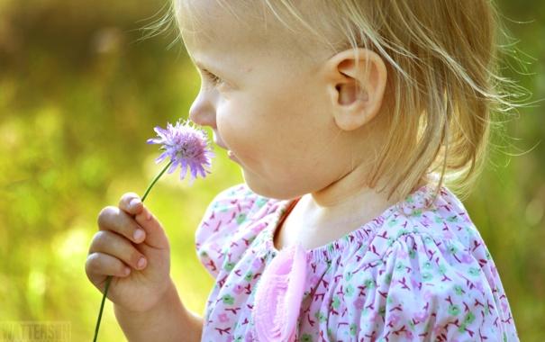 Фото обои цветок, лето, настроение, ребенок, девочка