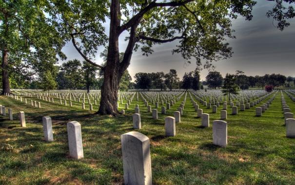 Фото обои кладбище, память, Arlington National Cimetery