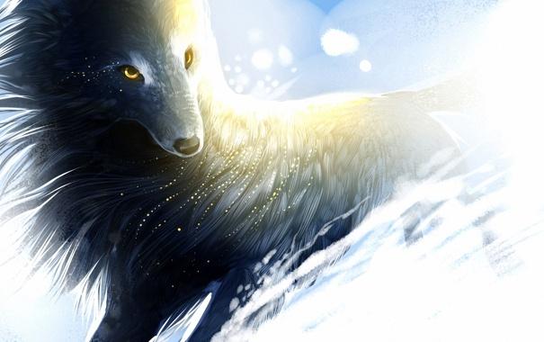 Фото обои снег, ветер, волк, арт, искры