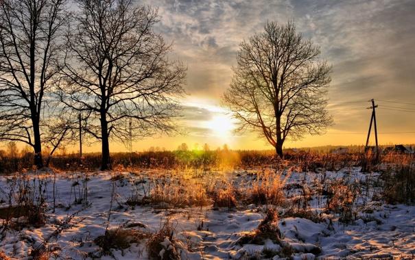 Фото обои деревья, закат, природа, трава снег