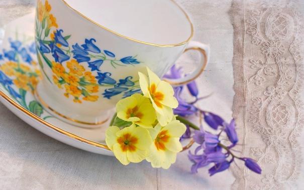 Фото обои цветы, чашка, желтая, блюдце, герань